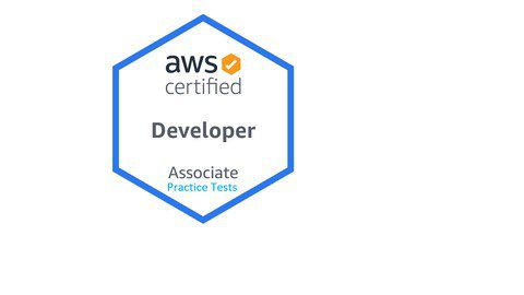 AWS Certified Developer - Associate Practice DVA-C01 Tests